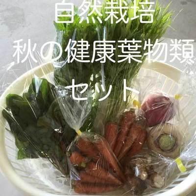めぐみ農場秋野菜