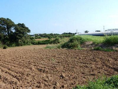 鈴木養蜂園