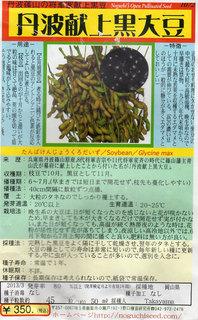 丹波黒大豆種