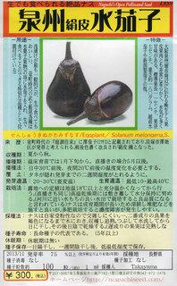 泉州絹皮水茄子.jpg